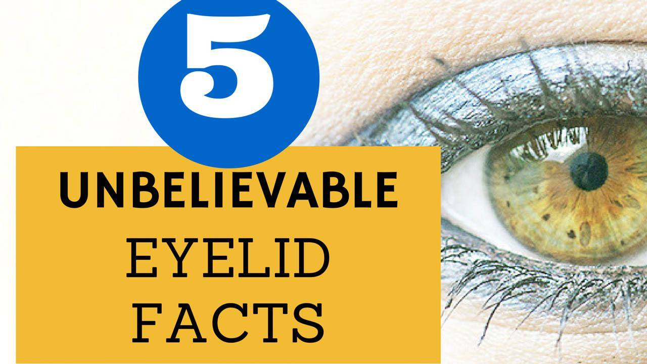 dr. brett kotlus eyelid facts